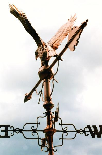 Eagle Weathervane by FM Enterprises. All rights reserved.